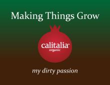 Making Things Grow